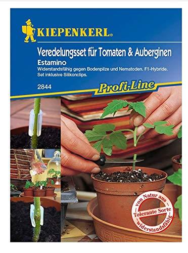 Veredelungsset Tomate Estamino und Silikonclips, Wiederstandsfähig gegen Bodenpilze und Nematoden, F1-Hybride, Set inklusive Silikonclips