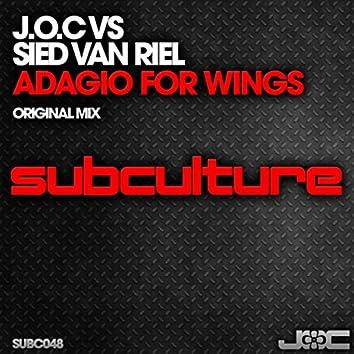 Adagio for Wings