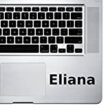 (2X) StickAny Palm Series Eliana Sticker for MacBook Pro, Chromebook, and Laptops (Black)
