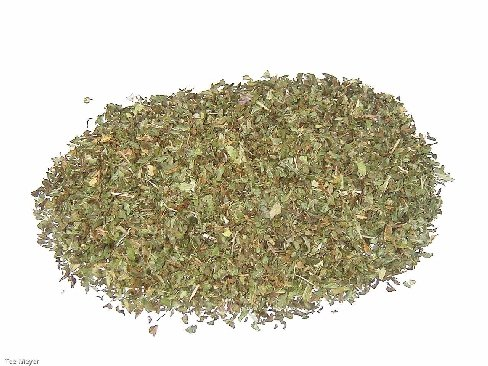 Pfefferminztee geschnitten Tee 1 kg Vorratspack lose Tee-Meyer