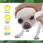 DISANE Nettoyant pour les Yeux des Chiens Naturel | Élimine les Taches, Croûtes et les Sécrétions Lacrymales Autour de l'œil | Formulé sous contrôle vétérinaire pour la santé oculaire du chien #3