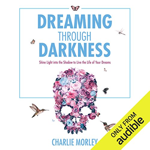 Dreaming Through Darkness audiobook cover art
