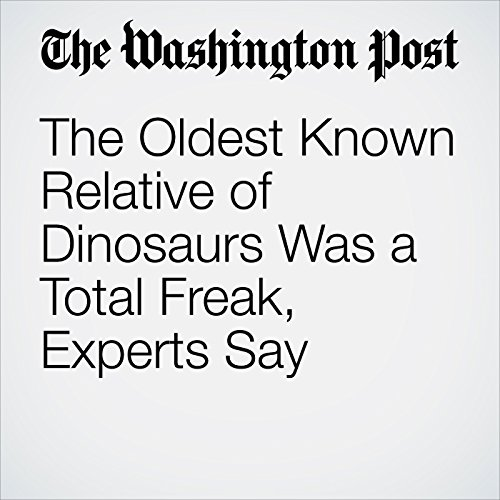 The Oldest Known Relative of Dinosaurs Was a Total Freak, Experts Say copertina