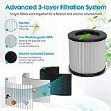 Zoom IMG-1 filtro purificatore d aria vero