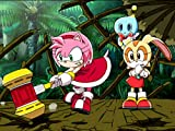 Desperately Seeking Sonic
