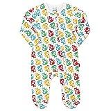 Kite Baby Rainbow Fox Sleepsuit | Organic | Newborn-24 Months