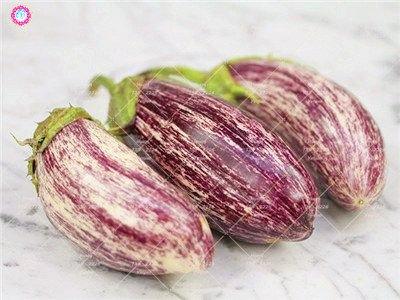 100pcs rond noir Aubergine Graines Heirloom légumes bio semences plantes non OGM pour le jardin bon goût riche en vitamines 6
