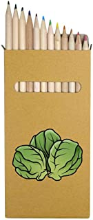 12 x 'Sprouts' Long 178mm Coloured Pencils / Pencil Set (PE00023848)
