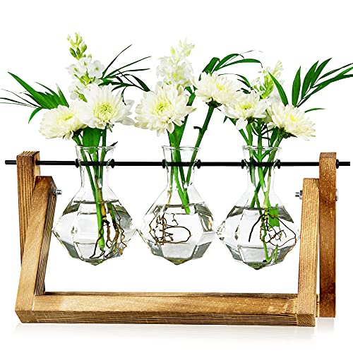 LESES Vase en verre diamant avec support à bascule en bois et tige rotative en métal, stations de multiplication pour plantes hydroponiques – 3 vases à fleurs diamant