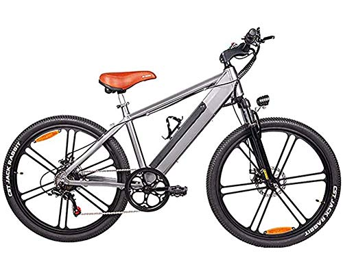 LJ Adult 26-Inch Magnesium Alloy Electric Bike, with Removable 48V 10Ah Lithium Battery,350W Motorcycle Mountain Bike Hydraulic Disc Brakes