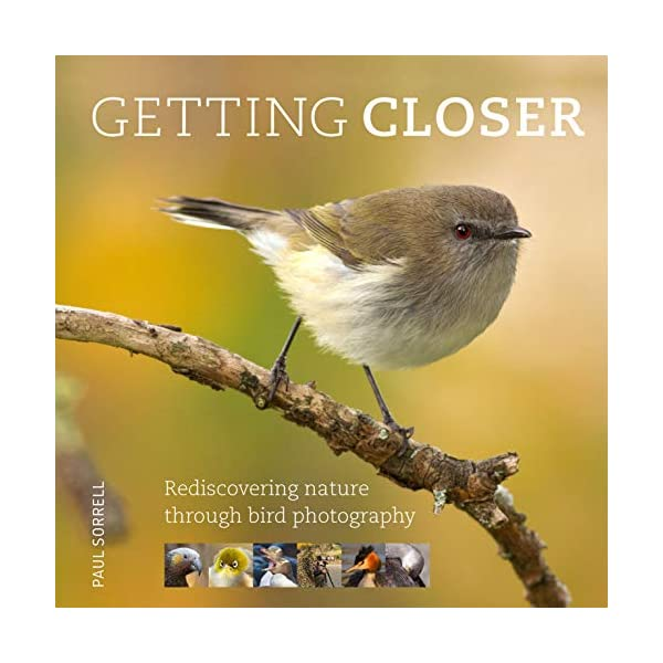 Getting Closer: Rediscovering Nature Through Bird Photography