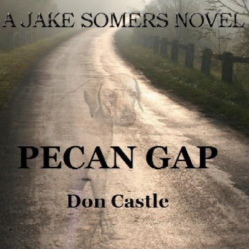 Pecan Gap audiobook cover art