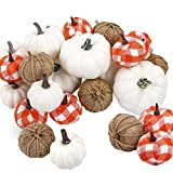 COCOBOO 24pcs Mixed Artificial Pumpkins Assorted Size and Color Harvest Pumpkins for Fall Wedding Thanksgiving Halloween Holiday Decoration