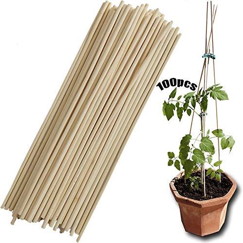 Pflanzenunterstützung 100 Stück Aus Bambus Gartengeräte Für Kleine Bonsai Anti Fall Halterung Pflanzenstütze Bambusstäbe Bambus Rankhilfe Pflanzenhalter Für Die Herstellung Von Gartenstativen