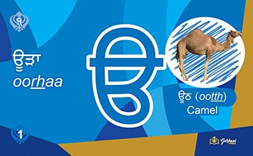 Punjabi / Gurmukhi Learning Flash Cards (Punjabi / English)