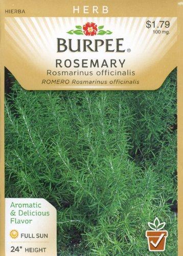 Burpee 61383草本迷迭香种子包