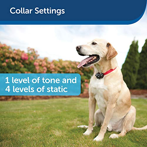 PetSafe Wireless Fence Pet Containment System, Covers up to 1/2 Acre, for Dogs over 3.6 kg, Waterproof Receiver with Tone / Static Stimulation