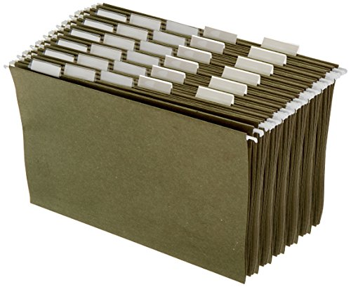 AmazonBasics-Hanging-Organizer-File-Folders-Green