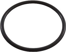 Zodiac O-Ring, Jandy AquaPure Ei, Locking Collar