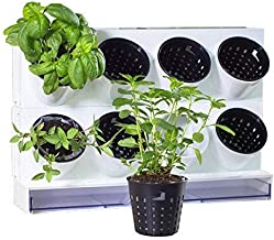 Watex Pixel Garden Desktop, Kitchen Farm, White