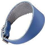 Arppe 195374535130 Collar Galgo Cuero Forro 3D Amazone, Azul y Gris