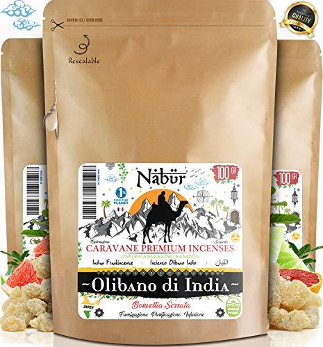 Nabür - Olibano Incienso 100 GR | Boswellia Serrata - Grado A | Alto H. Contenido Esencial |...