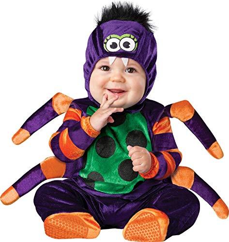 De Bébé Garçons Filles Itsy Bitsy Spider Livre Day Halloween in Character Costume Déguisement - Noir, 12-18 Months