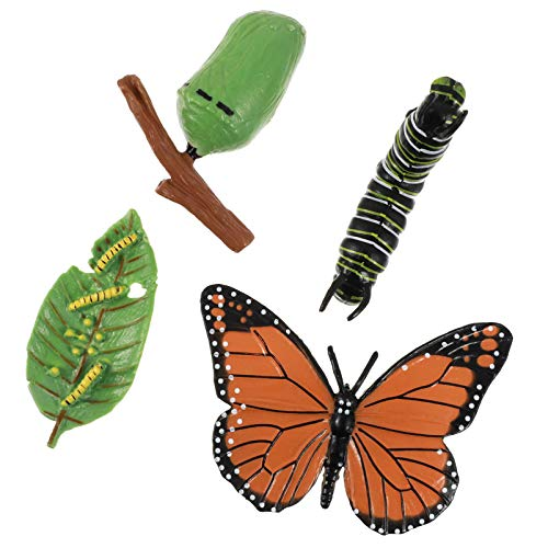 Hemoton 4pcs Life Cycle of a Monarch Butterfly Realistic Plastic Salmon Figurine Butterfly Growth Stage Model Figures Toys
