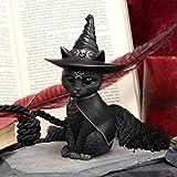 Nemesis Now Purrah Hexenhut Okkulte Katze, schwarz, 13,5 cm - 5