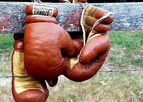 Boxen Boxhandschuhe Zaun Sport 1000 Puzzle Kinder Lernspielzeug Herausforderung Brainpower Holzpuzzles