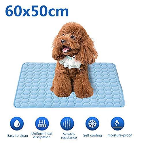 Homeyou Hundekühlmatte, Haustierkühlmatte Ungiftiges Gel Selbstkühlendes Pad für Hunde und Katzen Haustier Eismatte Hund Cool Pad im heißen Sommer (60X50CM)
