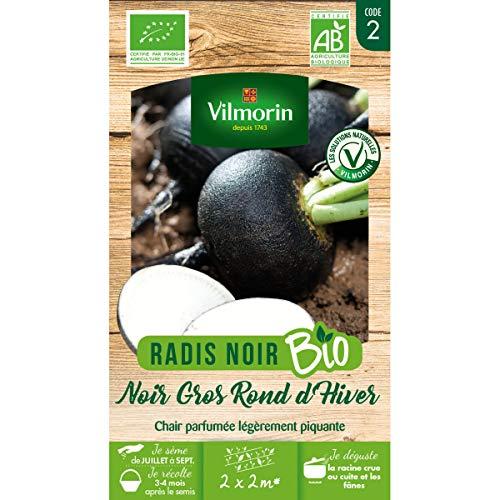Vilmorin - sachet graines Radis Noir Gros Rond d'hiver BIO