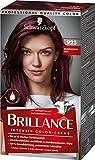 Brillance Intensiv-Color-Creme Haarfarbe 923 Burgunderrot Stufe 3, 3er Pack(3 x 160 ml)