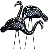 GiftExpress 2-Pack Halloween Black Flamingo Skeleton, Zombie Flamingos, Skull Flamingo with Stakes for Halloween Lawn Ornaments, Spooky Graveyard Decorations