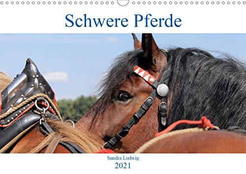 Schwere Pferde 2021 (Wandkalender 2021 DIN A3 quer)