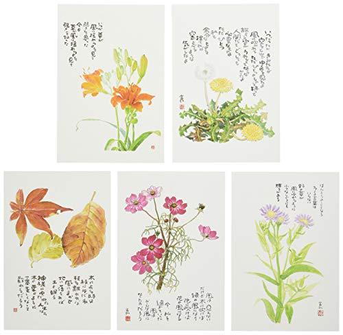 星野富弘 絵はがき 5枚セレクトシリーズ 風 No.1204