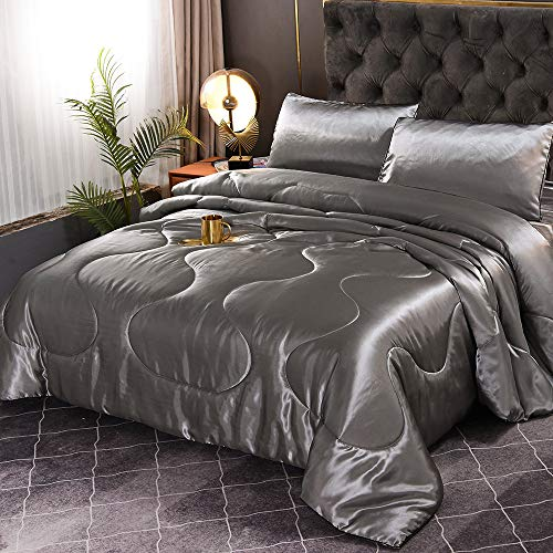 Sisher 5 Pcs Silk Comforter Queen Bedding Set Silver Grey Satin Silky Soft Bed in A Bag Luxury Quilt Comforter Set (1 Comforter, 2 Pillowcases, 1 Flat Sheet, 1 Fitted Sheet)
