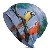 Cheap Orange Parrots Ocelot Skull Cap Stretchy Beanie Hat Baggy Caps Winter Knit Fashion Hats for Women Men