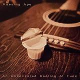 An Uncensored Bootleg of Funk