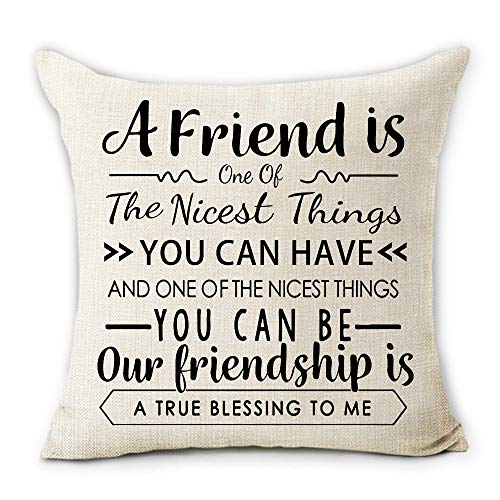 pinata Friendship Gifts Pillow Covers 18X18 Inch Decorative Cotton Linen Throw Pillow Cases with Friend Quotes Best Friendship Gifts for Friends