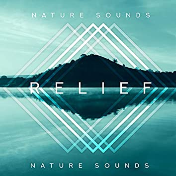 Nature Sounds Relief: Soothing New Age Music for Healing, Relaxation & Mindfulness
