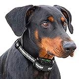 rabbitgoo Collar Antiladridos Perros Recargable por USB IP67 Impermeable Collar Adiestramiento con 5 Sensibilidad Ajustable, Vibración de Pitido Sin Daño Apto para Perros Pequeños Medianos Grandes