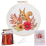 Stickset für Anfänger mit Eichhörnchen und Anleitungen, beinhaltet Muster, Bambus-Stickrahmen, Farbfäden und Werkzeuge