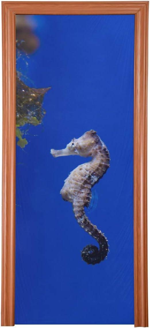 Puerta de granero decorativa para acuario, pez, caballito de ...