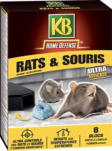 KB Rats Souris Blocs, 200gr