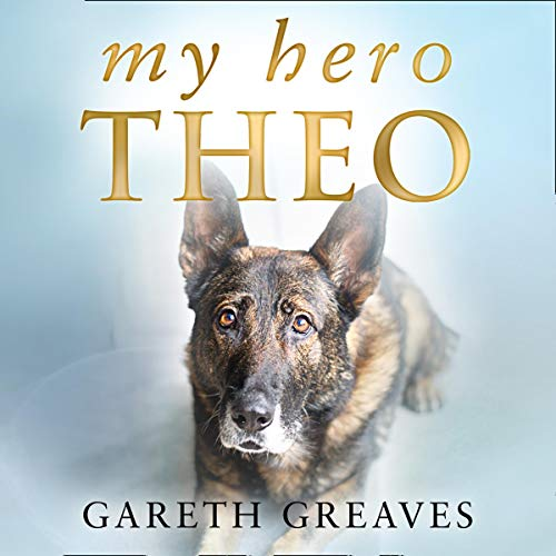 My Hero Theo cover art