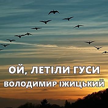 Ой, летіли гуси