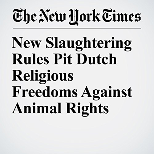 New Slaughtering Rules Pit Dutch Religious Freedoms Against Animal Rights audiobook cover art