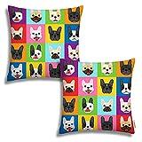 Set of 2 Throw Pillow Covers French Bulldog Faces Pillow Covers Home Decorative Pillow Cases Hidden Zipper 18