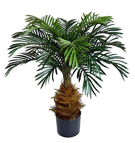 Seidenblumen Roß Cycaspalme 80cm DA Kunstpalmen Dekopalme Kunstpflanzen künstliche Pflanzen Palmen Cycas